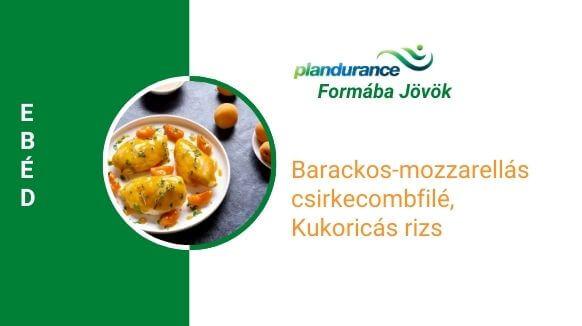 Barackos-mozzarellás csirkecombfilé, kukoricás rizs ebéd recept