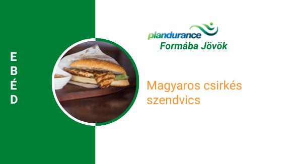 Magyaros csirkés szendvics Ebéd