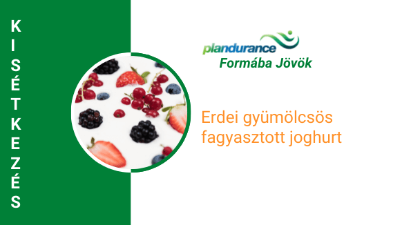 Erdei gyümölcsös fagyasztott joghurt Kisétkezés